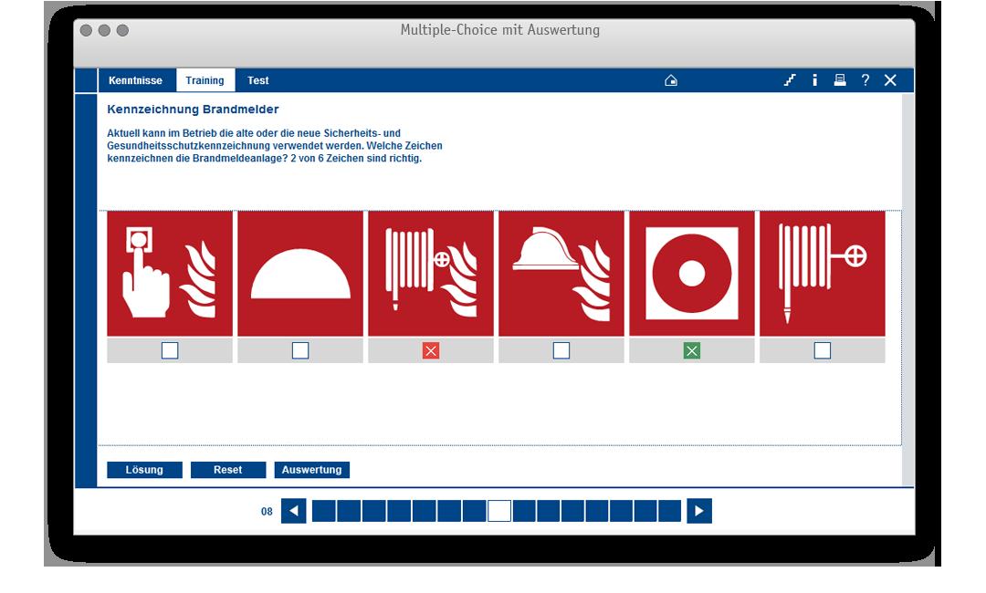 Aufgabentemplate für: Multiple-Choice mit Auswertung